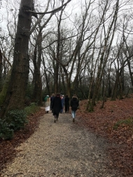 a walk amongst the beech trees in puddletown forest to hardy's cottage